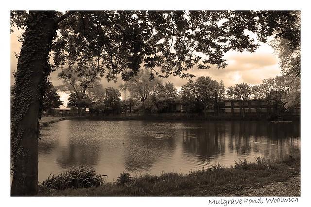 Mulgrave Pond, Woolwich