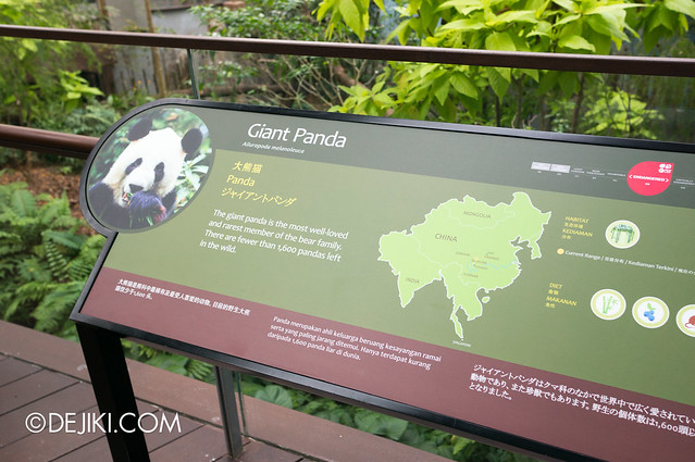 River Safari - Giant Panda Forest info