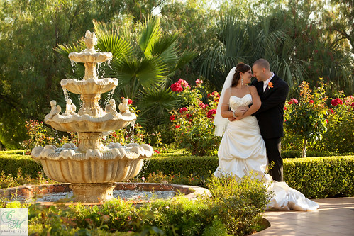 Villa de Amore Summer Rose Garden
