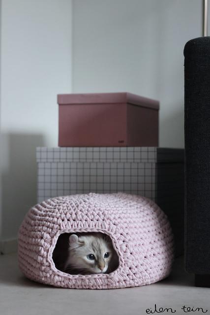 ll0607_eilen-tein-catbed