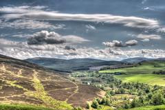 Glen Fiddich, Moray.