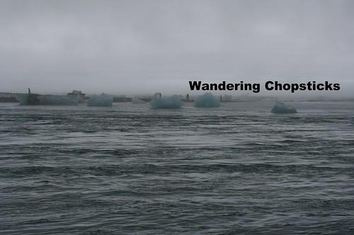 12 Jokulsarlon (Glacier Lagoon) - Iceland 19