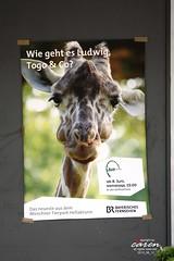 Tierpark Ads