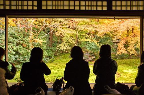 【写真】2012 紅葉 : 瑠璃光院/2020-06-07/IMGP7684