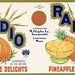 Radio Pineapple Delights by Alan Mays