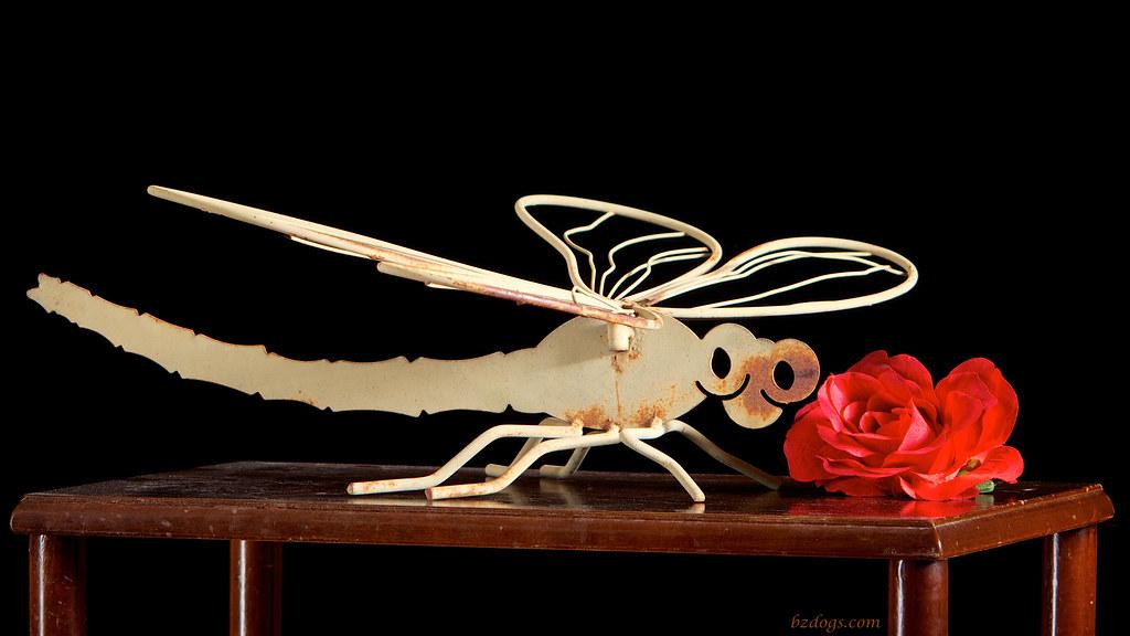 Rusty Dragonfly