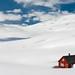 Norwegian snow desert by Markus Trienke