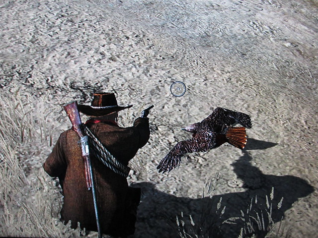 Red Tailed Hawk in Red Dead Redemption
