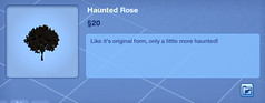 Haunted Rose