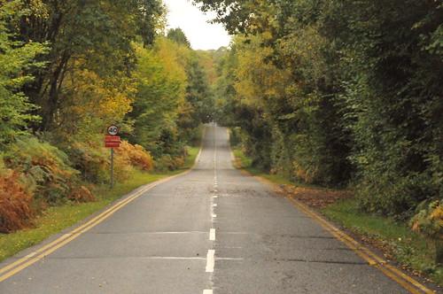 Driftless Wisconsin Road Tour Fall Foliage