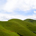 As green as the Kudremukha mountains...