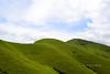 As green as the Kudremukha mountains...