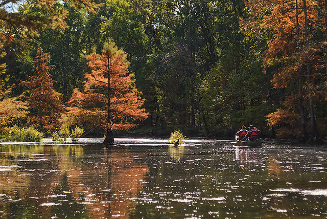 Mingo National Wildlife Refuge, in Puxico, Missouri, USA - canoers -2