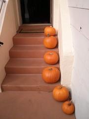 Pre-Carved Pumpkins