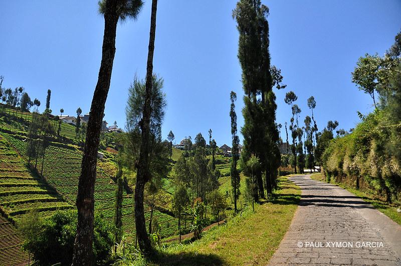 Ngadas, Mount Bromo, East Java, Indonesia