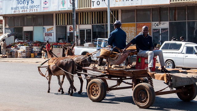 Donkey cart in Mokopane