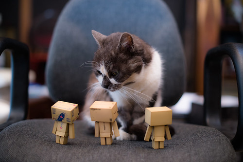 Miyako vs Danbo negotiator team by Takashi(aes256)