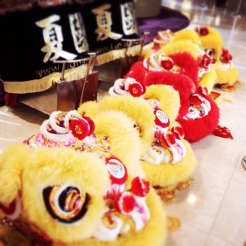 chinese new year, hong kong, celebration, festival, festivities, lion dance