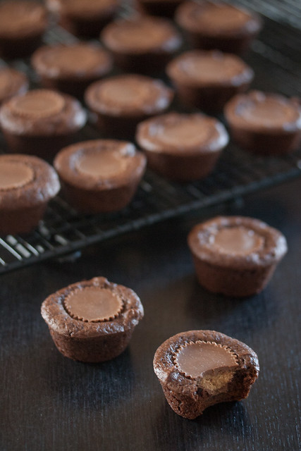 Two-Bite Peanut Butter Cup Brownies