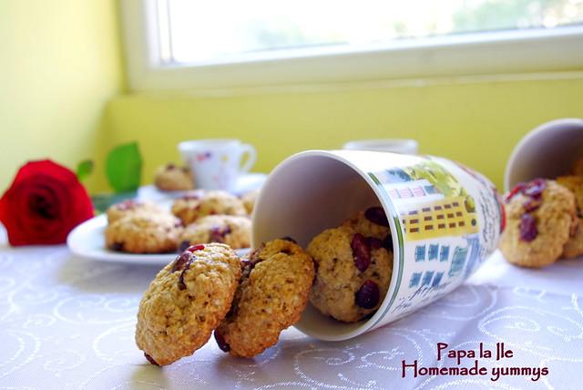 Biscuiti de ovaz cu merisoare (9)