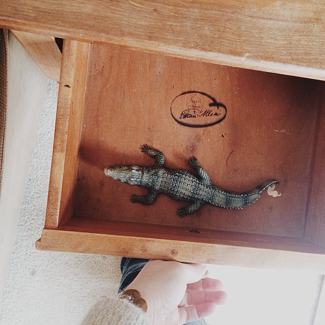 I hate when I open a drawer and almost get my hand bitten by an alligator.  #toddler #children #alligator #wildanimals #itsazooinhere