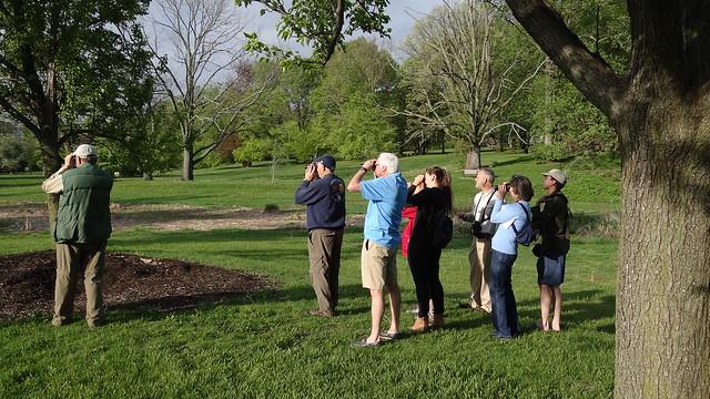 birders birding Brookdale Park