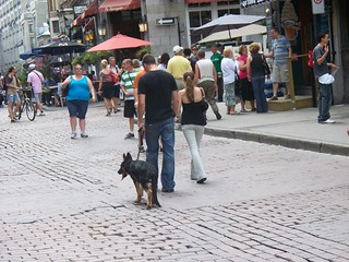 Montreal, Quebec - Old Town