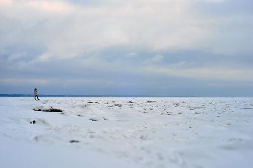 finskyzaliv
