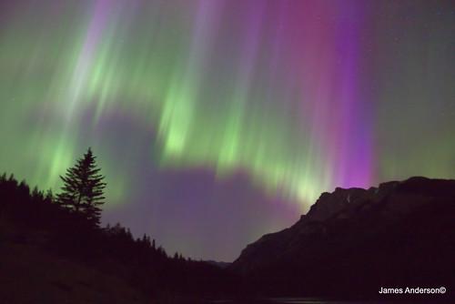 Incredible Aurora