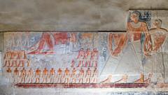 Mastaba of Mereruka Pano