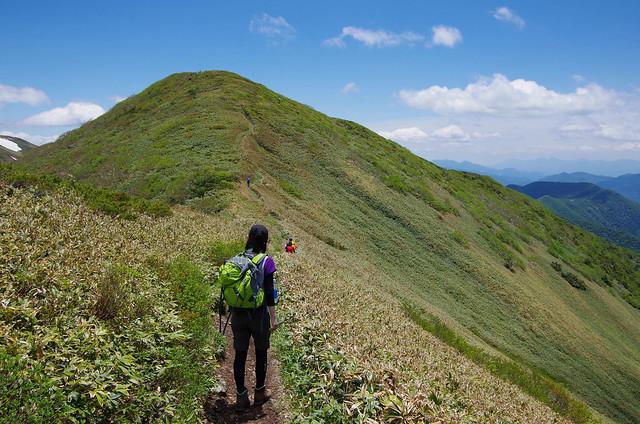 20150607-仙ノ倉山S-0073.jpg