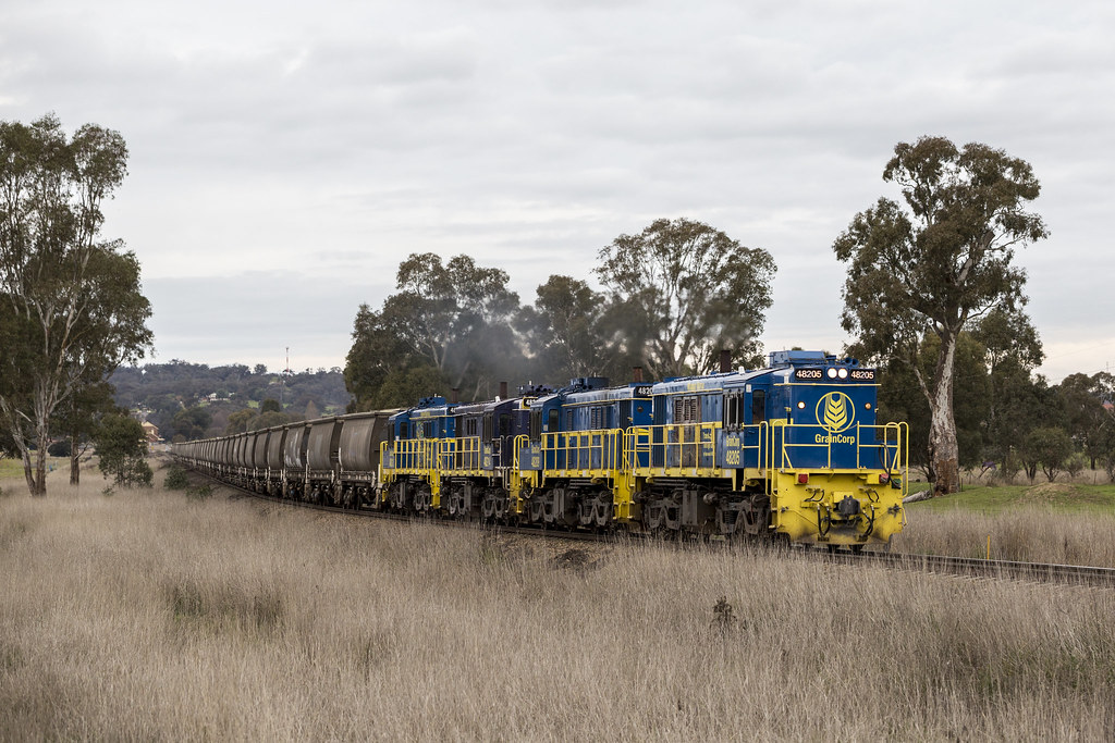 2016-07-04 Pacific National 48205-48209-48214-48212 Cootamundra West 3823 by Dean Jones
