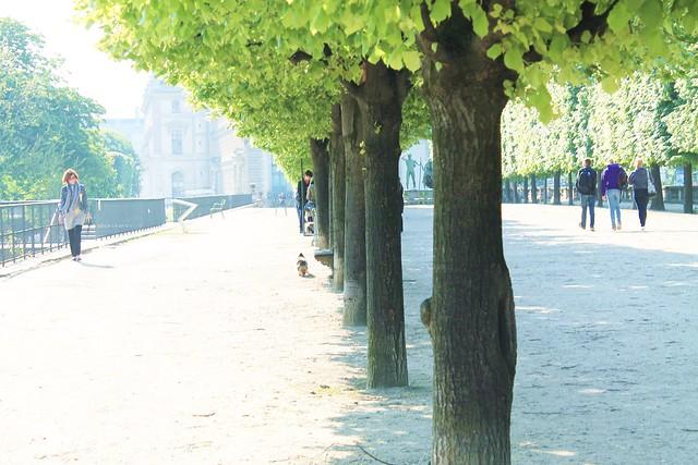 PARIS 454