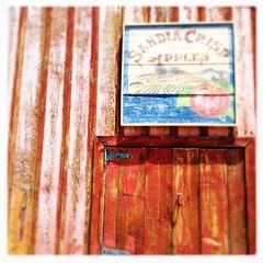Albuquerque Bio Park Botantical Garden ABQ New Mexico Sandia Crisp Apples IMG_8278
