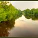 Wolf River Near Shawano