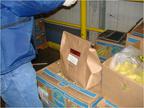 When food is collected for sample testing, like the bananas shown here, the package often contains more than what is needed to do the tests.   USDA's Agricultural Marketing Service (AMS) donates the extra food to area food banks.