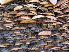 Fresh Cut Stacked Wood for Fish Boil