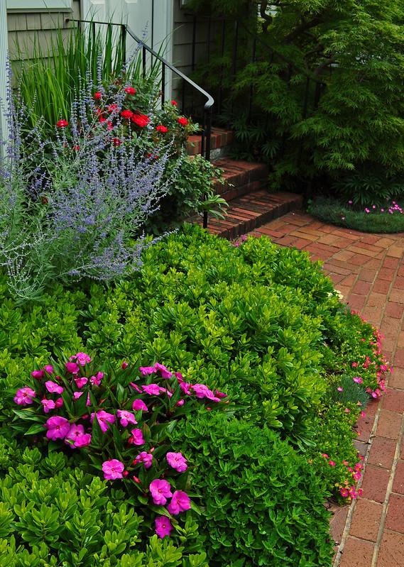 MacKinlay Garden (9)