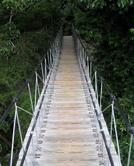 suspension bridge, canopy walkway, rope bridge, walkway, bridge,