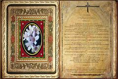Lectura Libro de Jonás 1,1-16.2,1.11.  Lunes 07 Octubre 2013