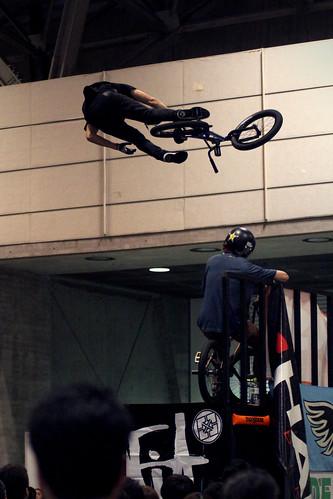 Kris Fox