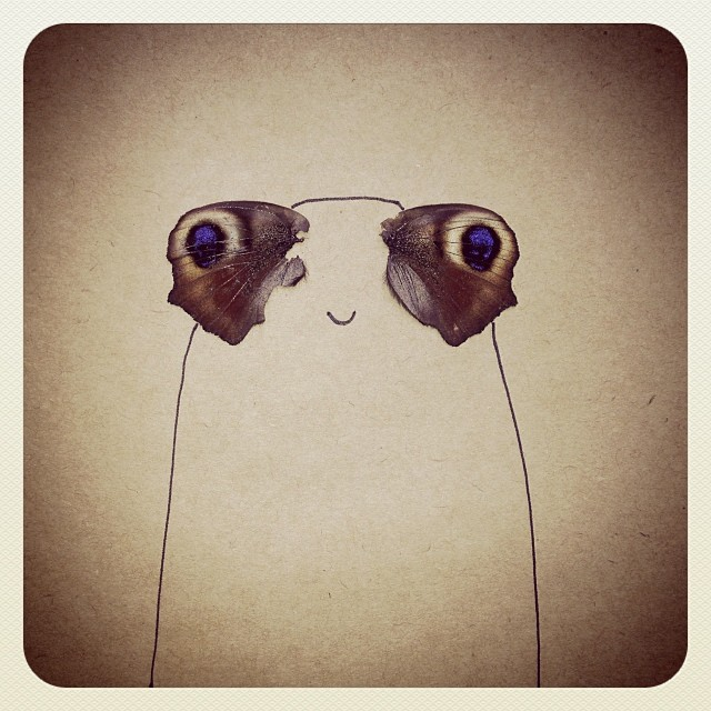 Butterfly eye guy
