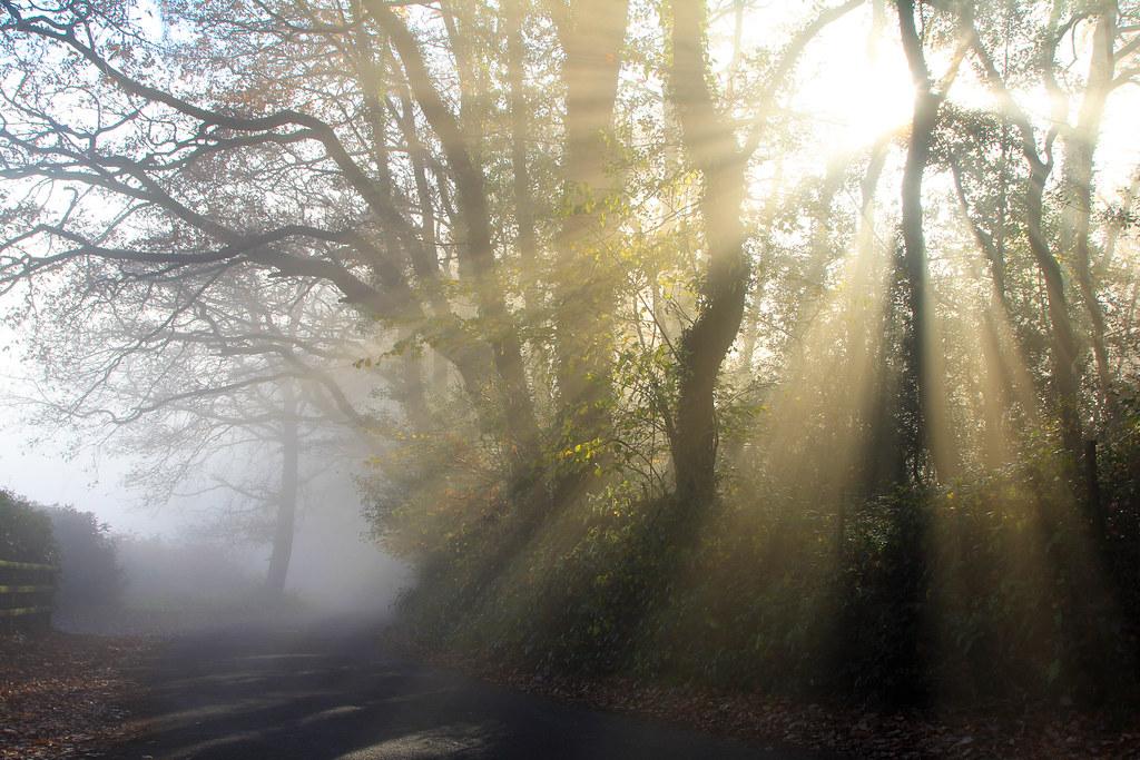 Usvainen-aamu-Englannissa
