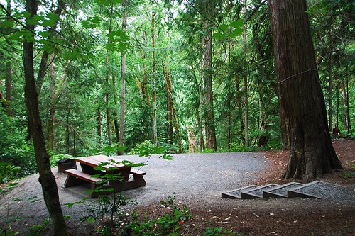 Campsite at Bamberton Park, Mill Bay, Vancouver Island, British Columbia, Canada