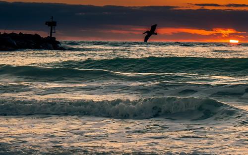 sky orange gulfofmexico nature landscapes florida jetty sunsets beaches skyscapes goldenhour fireinthesky skycandy gf1 fav10 cloudsonfire sunsetmadness sunsetsniper