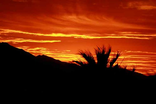 134452-1.jpg by Robert W Gilcrease