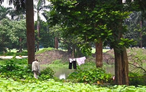 homeless living in the park