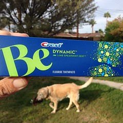 Early contender for 2014 Toothpaste of the Year: Crest Be DYNAMIC™ Lime Spearmint Zest