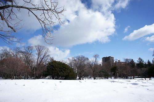 snowy 140411