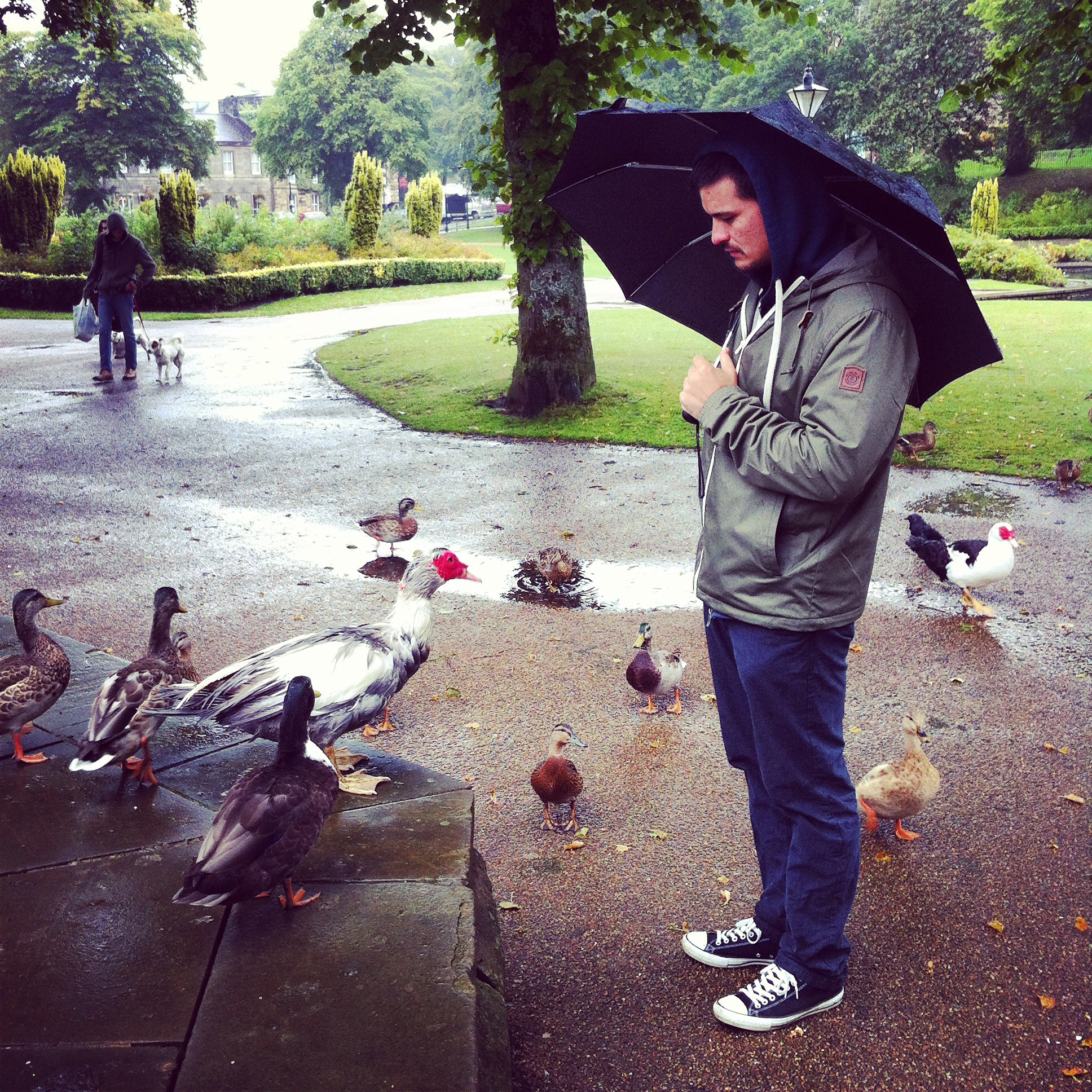 Djamo and the Ducks